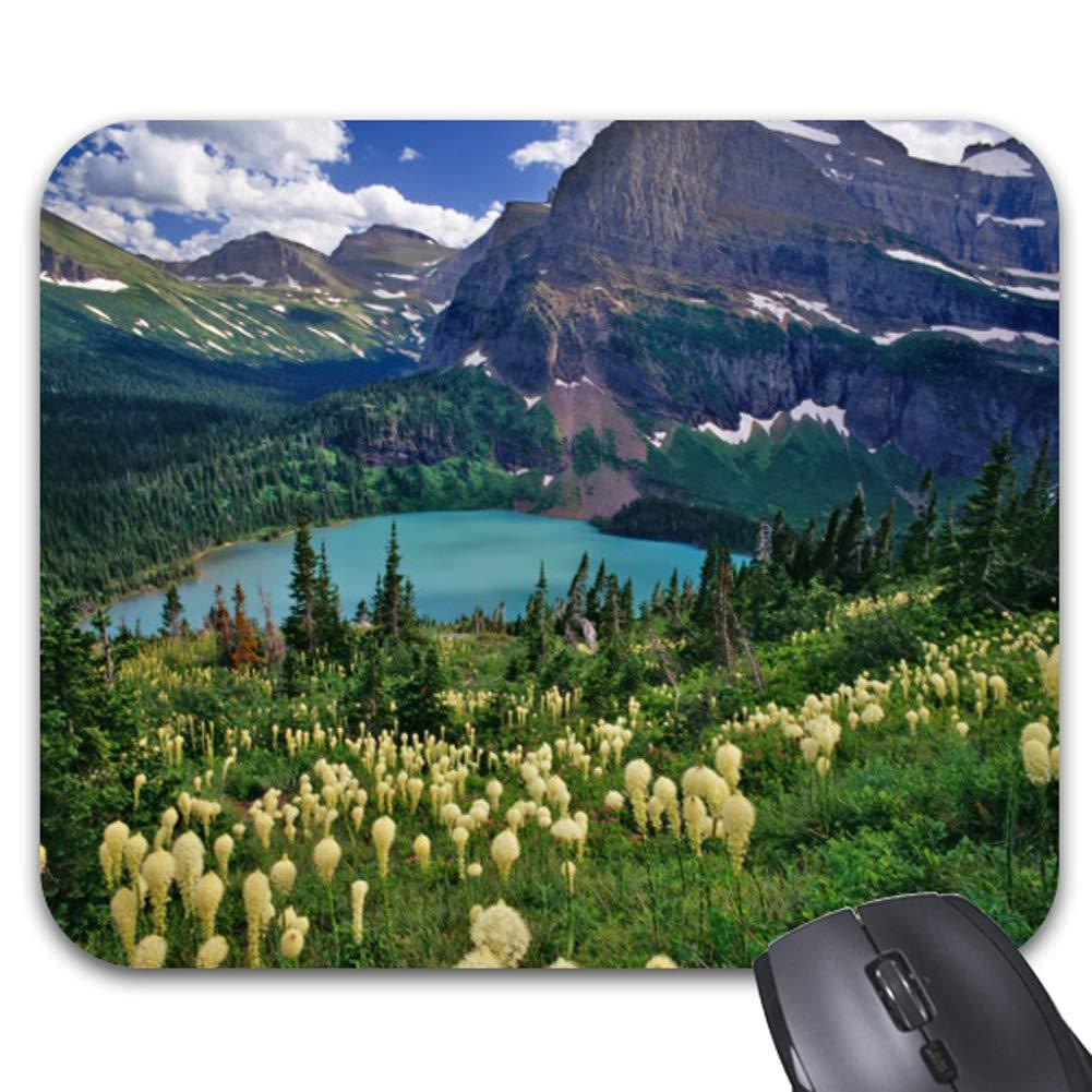 xinleibusiness Crazy Fish Design Personalized Rectangle Desktop Mousepad Mouse Pad 24 x 20 cm