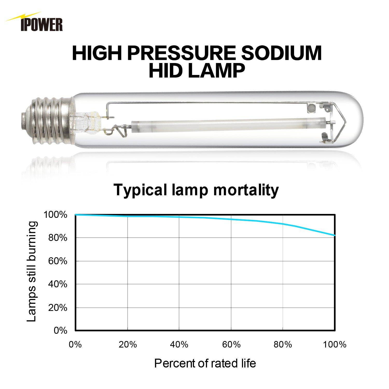 Ipower 400 Watt High Pressure Sodium Hps Grow Light 1000 Ballast Wiring Diagram Bulb Lamp Par Enhanced Red And Orange Spectrums Cct 2100k 2 Pack Garden Outdoor