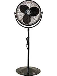 Shop Amazon Com Pedestal Fans
