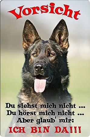 DSH 35 T2 Deutscher SCH/ÄFERHUND ++ Metall WARNSCHILD Schild Hundeschild Sign