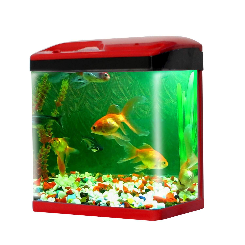 Jainsons Pet Products Fish Aquarium Combo Tank 15 Ltr Colour May Vary Amazon In Pet Supplies