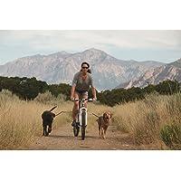 Petego CYCBARL Cycleash: Zusätzliche Halterung mit Leine