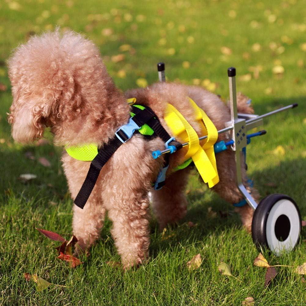 BEST WALKING Scooter para Mascotas Ajustable Ortopedico Silla De Ruedas para Perros Patas Traseras Rehabilitación Perro Apto Interior Exterior Viaje
