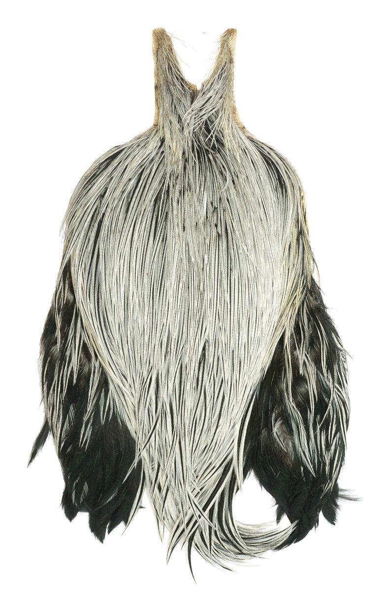 Rooster Neck, Grade #1 - badger by Metz