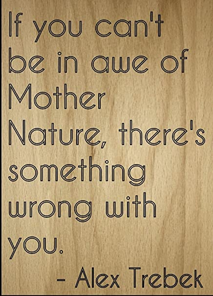 Amazoncom If You Cant Be In Awe Of Mother Nature Quote By