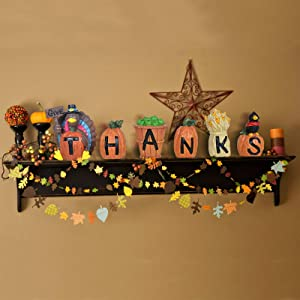 ALLADINBOX 6PCs GiveThanks Thanksgiving Home Decoration Blocks Turkey Signs Figurine Hand-Paint Centerpiece Decor for Fall Gather Blocks Resin Gift Sets