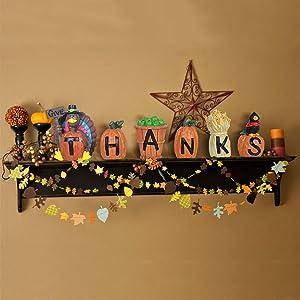 ALLADINBOX 6PCs GiveThanks Thanksgiving Home Decoration Blocks Turkey Signs Figurine Hand-Paint Centerpiece Decor for Fall Gather Blocks Resin Gift Sets
