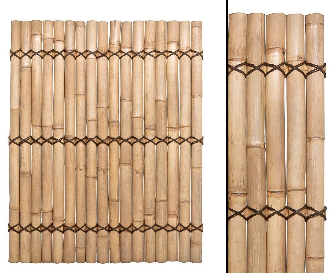 Bambus Zaun Apas Gelblich Starre Verschnurrrung Druch 6 Bis