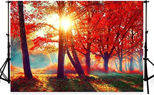 Waw Autumn Scenery Foto Hintergrund Öl Bemalt Kamera