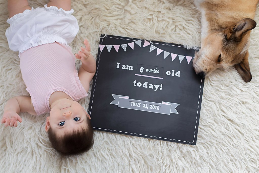 Time Snap Baby Milestone Sign, Reusable Photo Prop Keepsake. Convenient Wheel Design. No Writing Required Pink