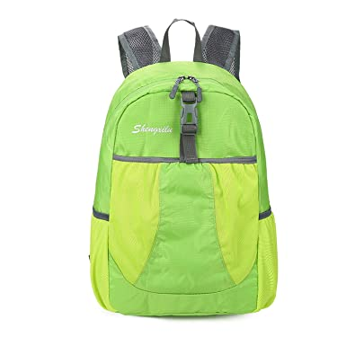 8c7daef187 Image Unavailable. Image not available for. Color  Travel Lady Backpack  Waterproof Backpack Women Bags Nylon Women S School Bags Laptop Backpacks  Green