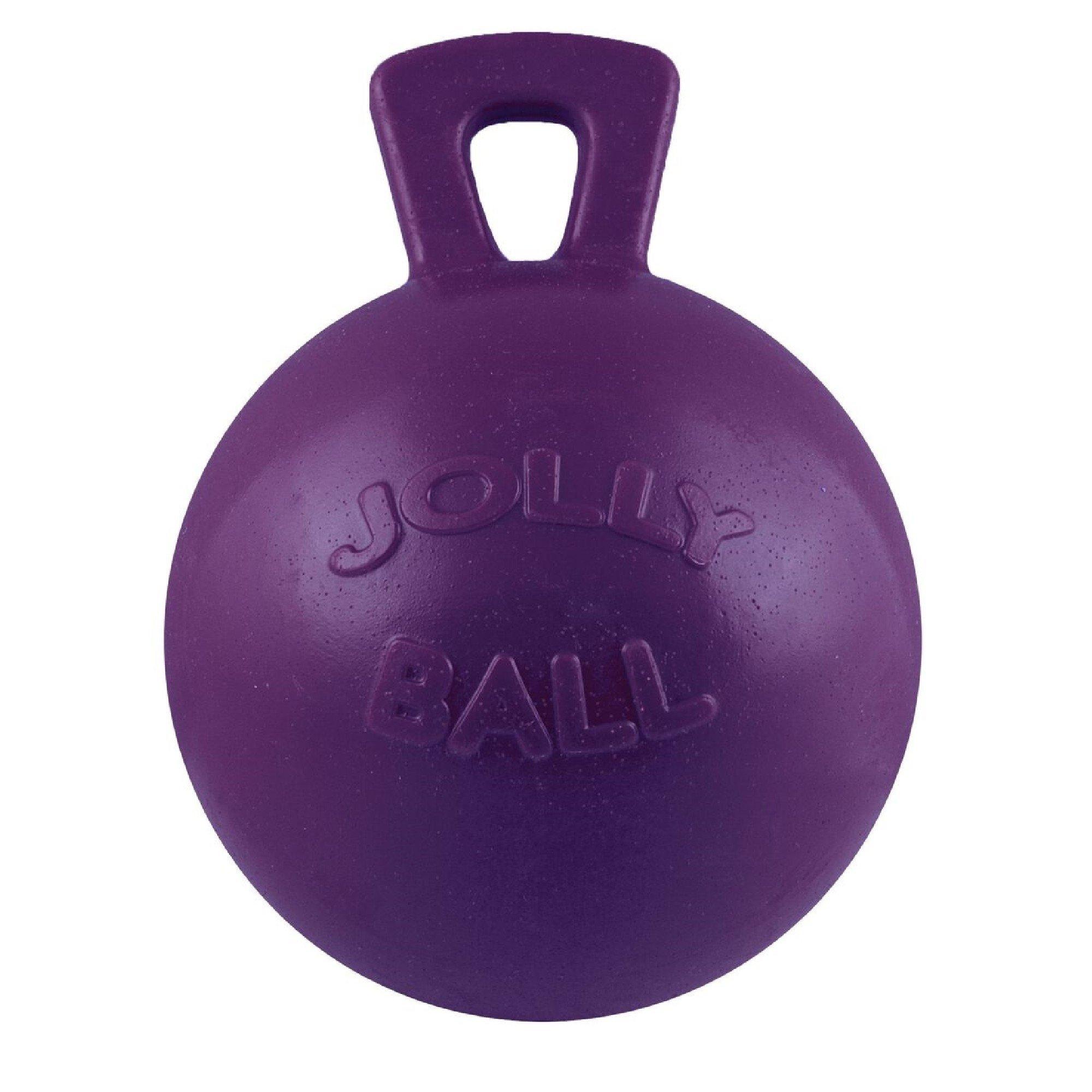 Horsemens Pride Jolly Ball (10 inches) (Purple)