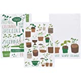 Now Designs Printed Floursack Kitchen Towels, Set of Three, Green Thumb Print