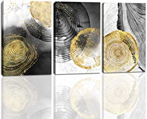 Canvas Wall Art for Bedroom Wall Art Prints Picture Stretched Artwork for Living Room Bedroom Decoration Abstract Golden Tree Rings 12X16inchx3Pcs