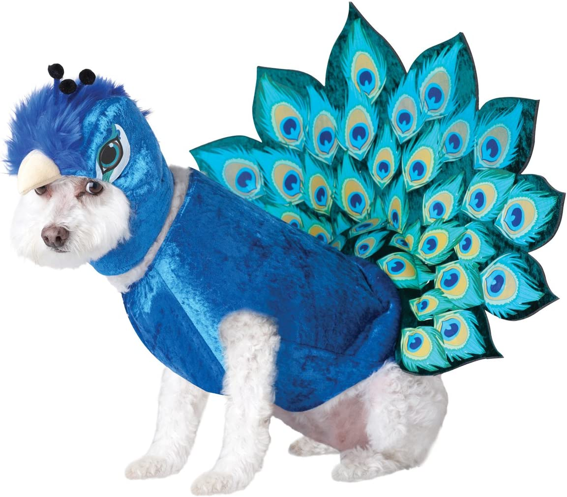 California Costumes Pet Peacock Dog Costume Costume