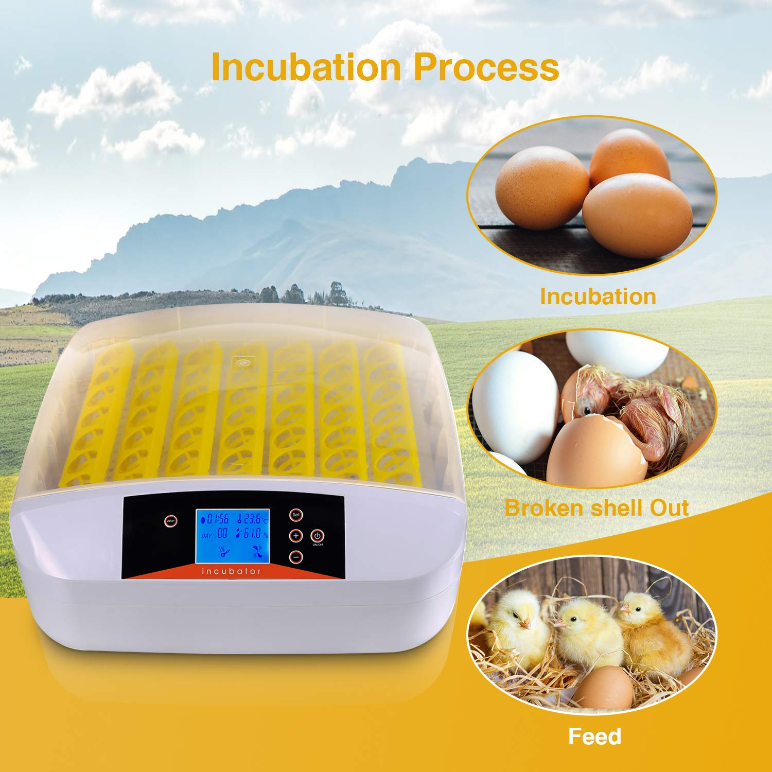 Currens 56 Egg Incubator with Eggs Turner,Digital Automatic Incubators for Hatching Chicken Duck Quail Birds Eggs Poultry Hatcher,Encubadora De Huevos by Currens (Image #6)