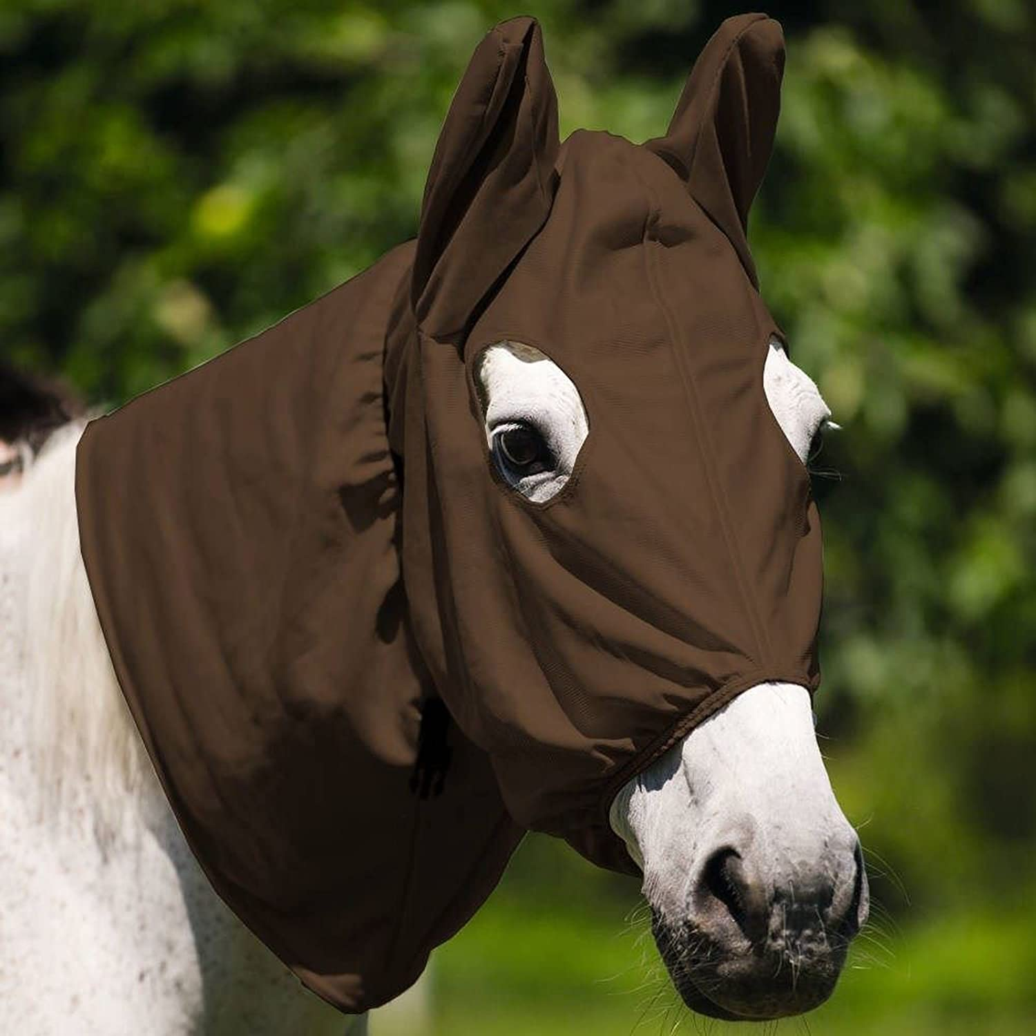 "Brown Equi-Theme//Equit/'M Unisex/'s Sweet-Itch"" Mask X Small"
