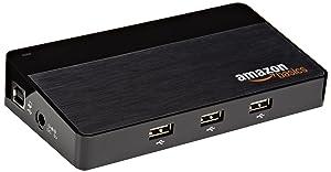 AmazonBasics 10 Port USB 2.0 Hub