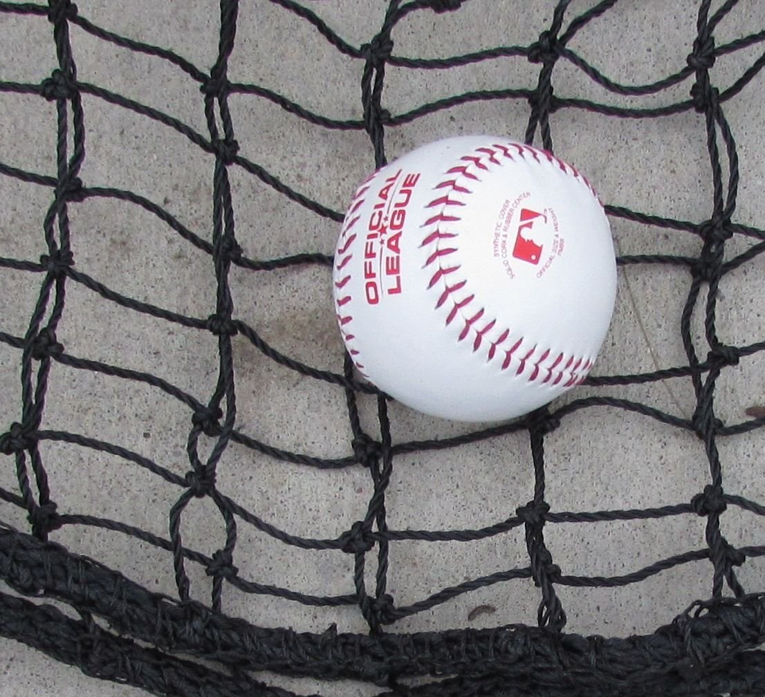 Jones Sports Heavy Duty Repl. L-Screen 6' x 6' #42 Twine Batting Cage Baseball Pitching Net by Jones Sports