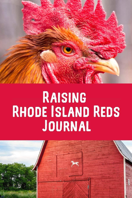 Buy Raising Rhode Island Reds Journal I Love My Backyard
