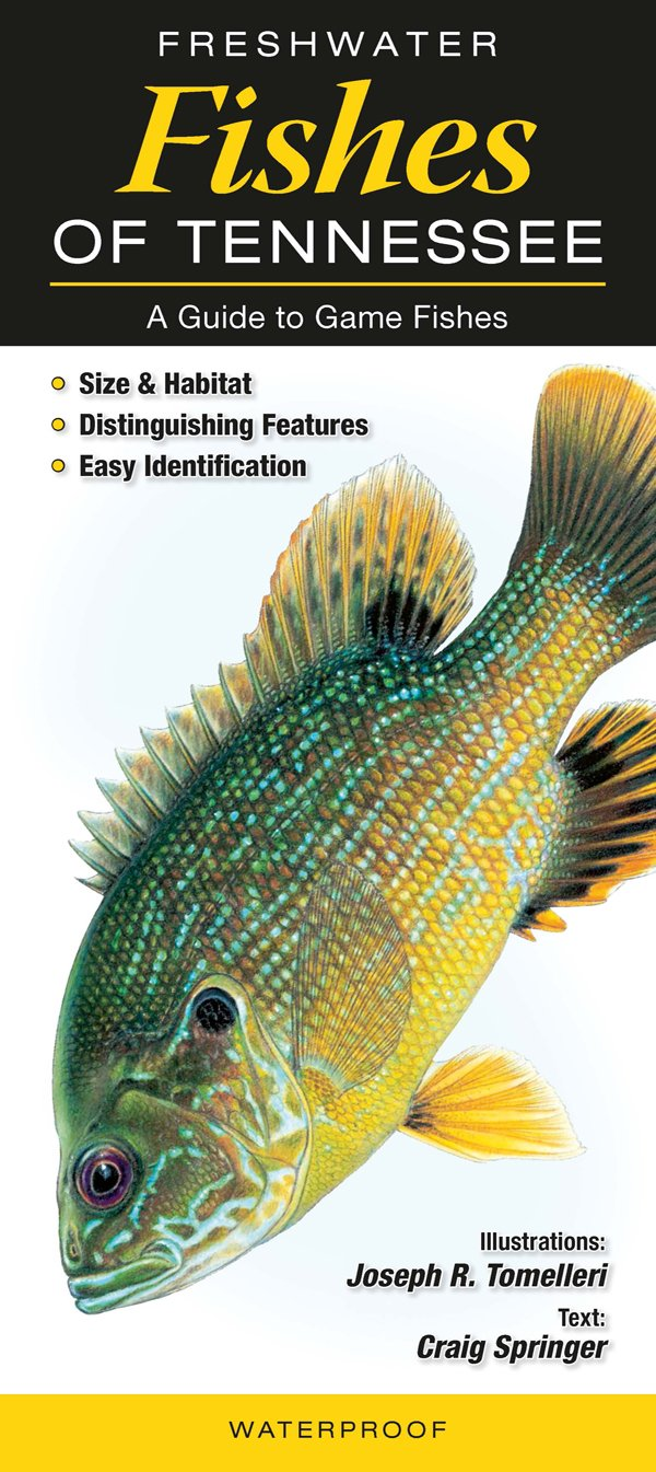 Freshwater Fishes of Tennessee: A Guide to Game Fishes