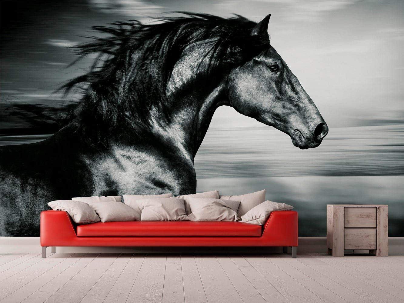 Papel Pintado para Pared Caballo Negro | Fotomural para Paredes | Mural | Papel Pintado | Varias Medidas 150 x 100 cm | Decoración comedores, Salones, Habitaciones.