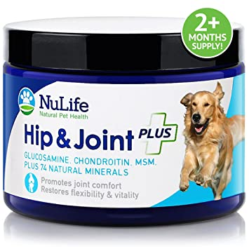 best glucosamine for dogs