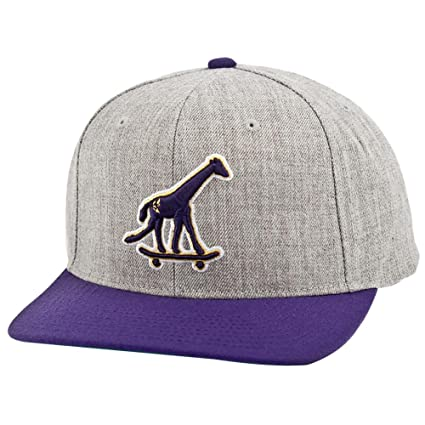 c549c2f9a06 Amazon.com  LRG Skate Giraffe Men s Adjustable Casual Wear Hat Cap ...