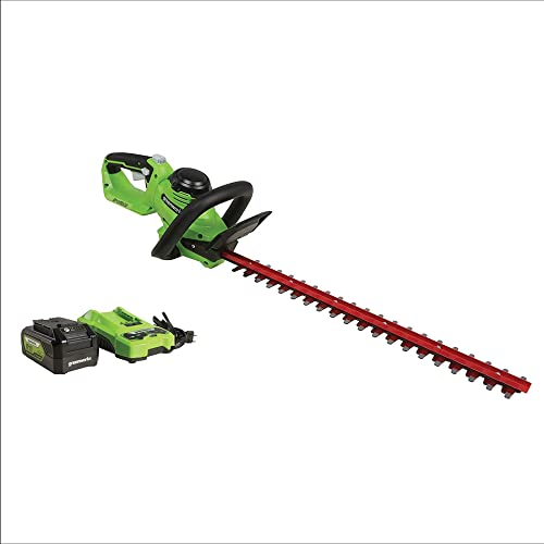 Greenworks 24V 22 Laser Cut Hedge Trimmer, 4Ah USB Battery and Charger Included HT24B414