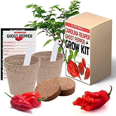 Carolina Reaper and Ghost Pepper Chili Grow Kit - All in One Pepper Seed Plant Growing Kit Gift : Garden & Outdoor