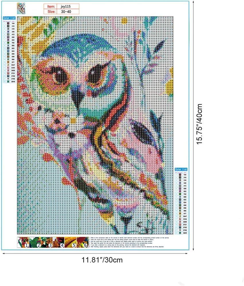 MWOOT 5D B/úho Diamante Pintura por N/úmero Kit,DIY Owl Diamond Painting Rhinestone Bordado de Punto de Cruz Artes Manualidades Lienzo Pared Decoraci/ón 30x40cm
