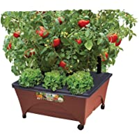 Emsco Group Earth Brown Resin Raised Garden Bed Grow Box Kit with Self Watering System and Casters Patio and Deck Gardening