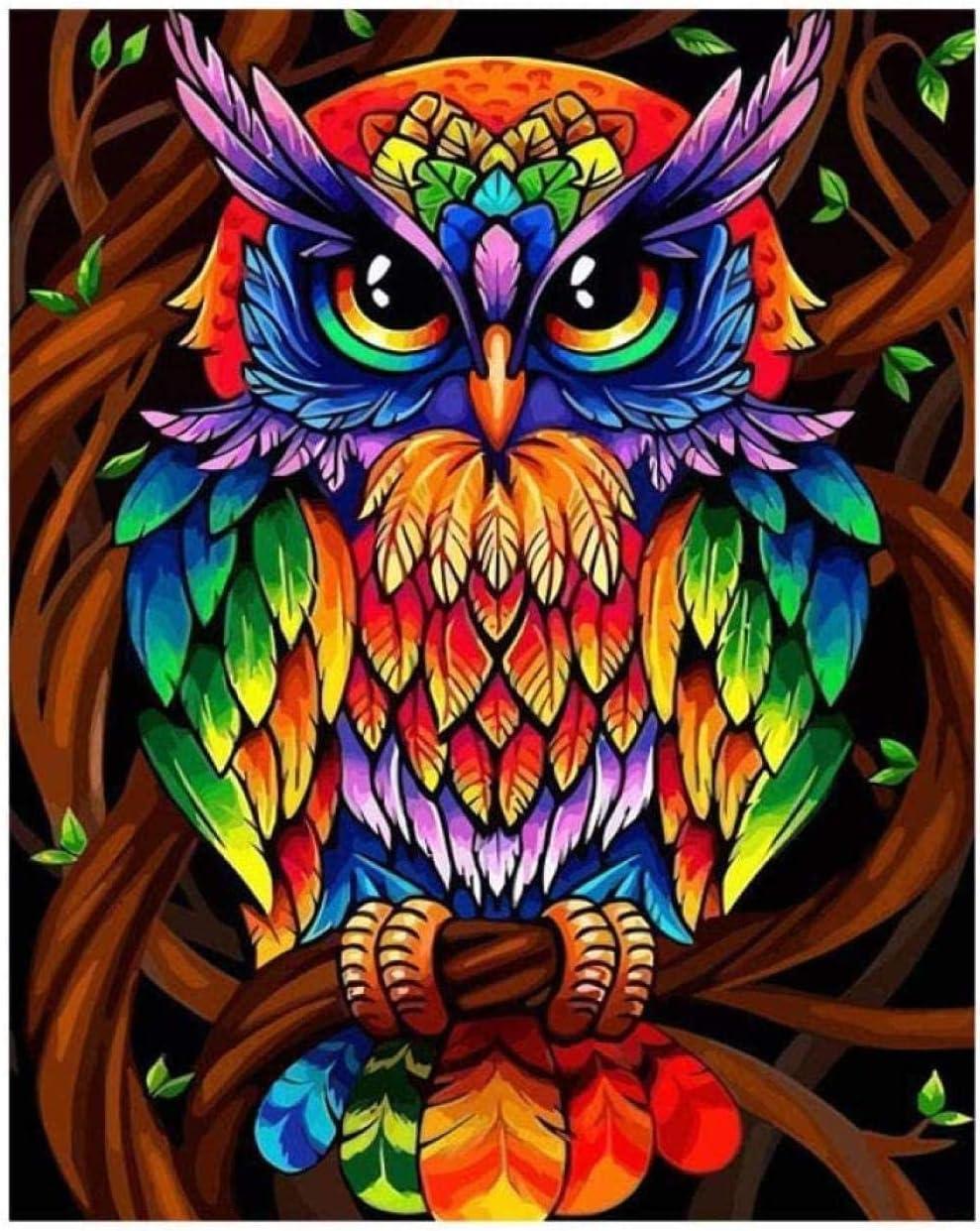 -N38 Peinture De Bricolage Peinture Par Num/éros Kits Sur Toile Chat Peinture /À LHuile Sur Toile Pour Adultes D/ébutant 16X20 Pouces Sans Cadre 40X50 Cm