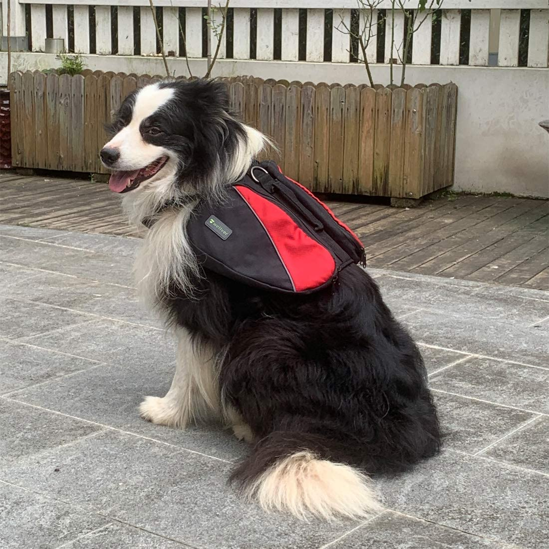 Wellver Dog Backpack for Hiking Saddle Bag for Pets Lightweight Travel Bag  and Hiking Bag for Dogs Dogs Pet Supplies rayvoltbike.com
