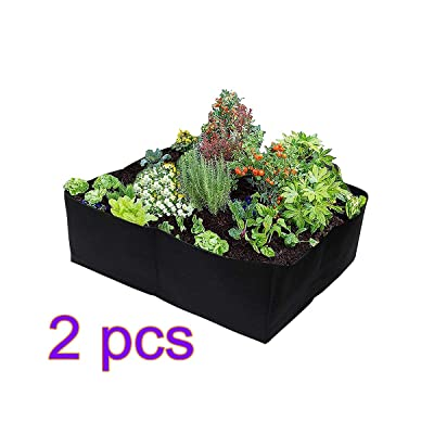 DAMEING Fabric Raised Garden Bed Rectangle Grow Box Divided Raised Vegetable Bed 2Feet x 2Feet 4 Holes Breathable Planting Container Grow Bag Planter Pot for Plants, Flowers, Vegetables : Garden & Outdoor