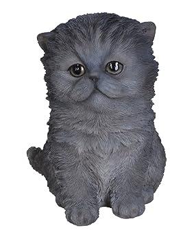 Vivid Arts - Figura decorativa de jardín, diseño de gato persa, color azul: Amazon.es: Jardín