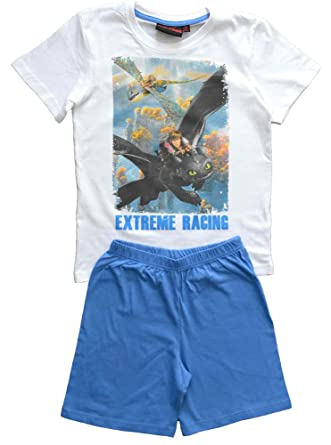 Boys how to train your dragon pjs pyjamas size 6 years amazon boys how to train your dragon pjs pyjamas size 6 years ccuart Image collections