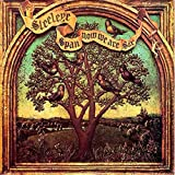 Steeleye Span - Now We Are Six - Chrysalis - 6307529