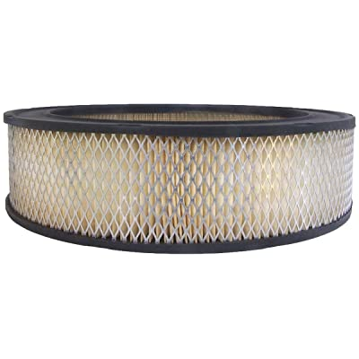 Luber-finer AF31 Heavy Duty Air Filter: Automotive