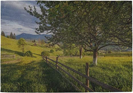 Rail Fence Placemats Set of 2