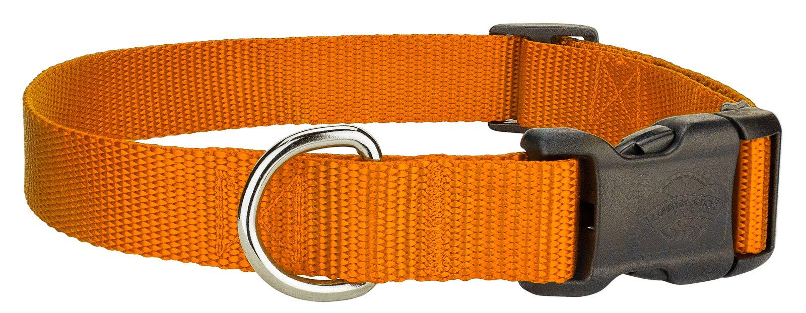 Country Brook Design 10 - Deluxe Nylon Dog Collars - Orange - Extra Small