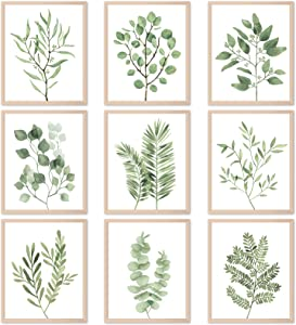 9PCS Botanical Plant Wall Art Prints Green Plant Wall Decor Boho Herb Wall Decor Pictures Minimalist Wall Art Photo Prints for Living RoomKitchen Leaves (8