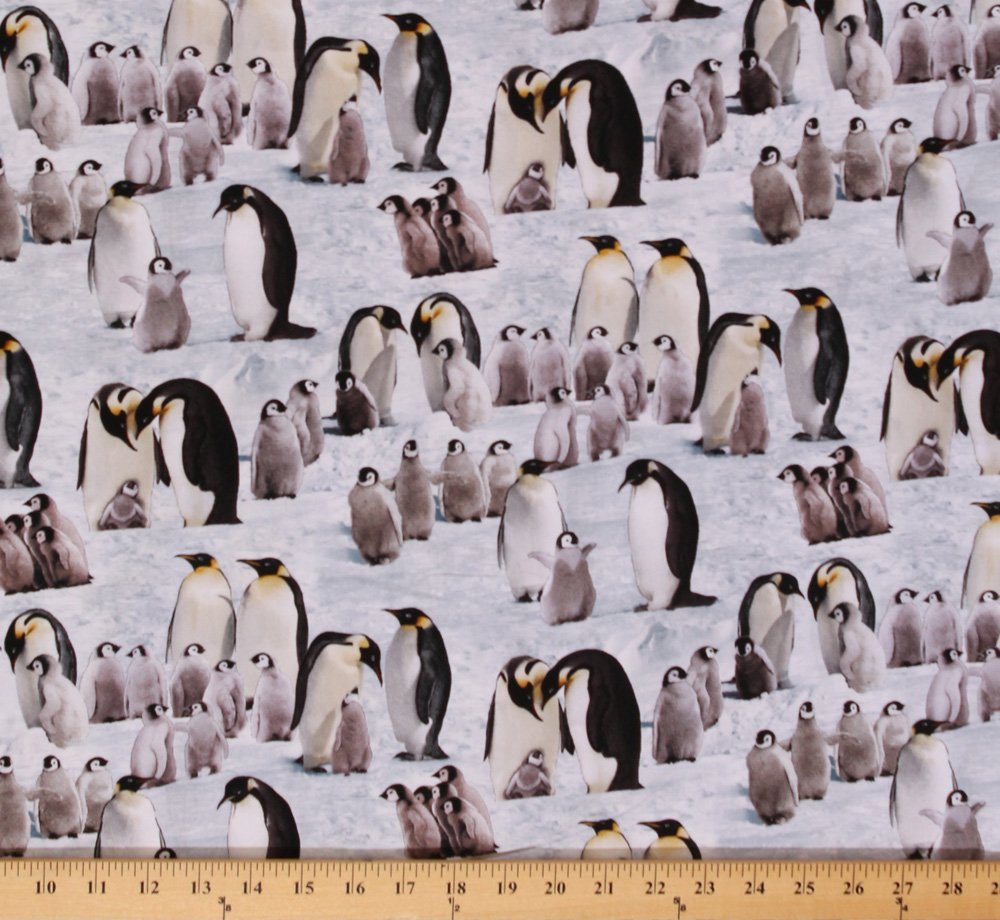 c3b884779b0 Amazon.com: Cotton Penguins Penguin Arctic Animals Cotton Fabric Print by  the Yard 490- Snow