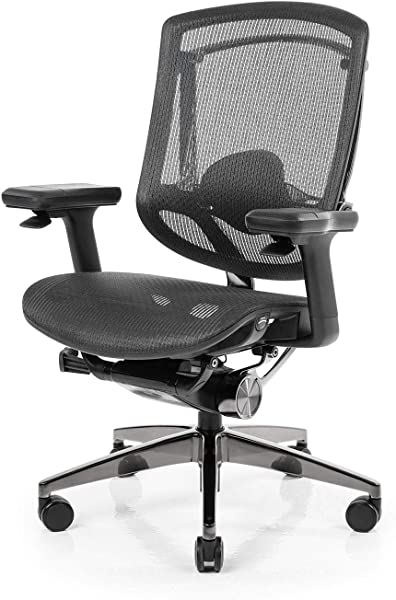 NeueChair Obsidian | Ergonomic Office Computer Chair (Subsidiary of Secretlab)
