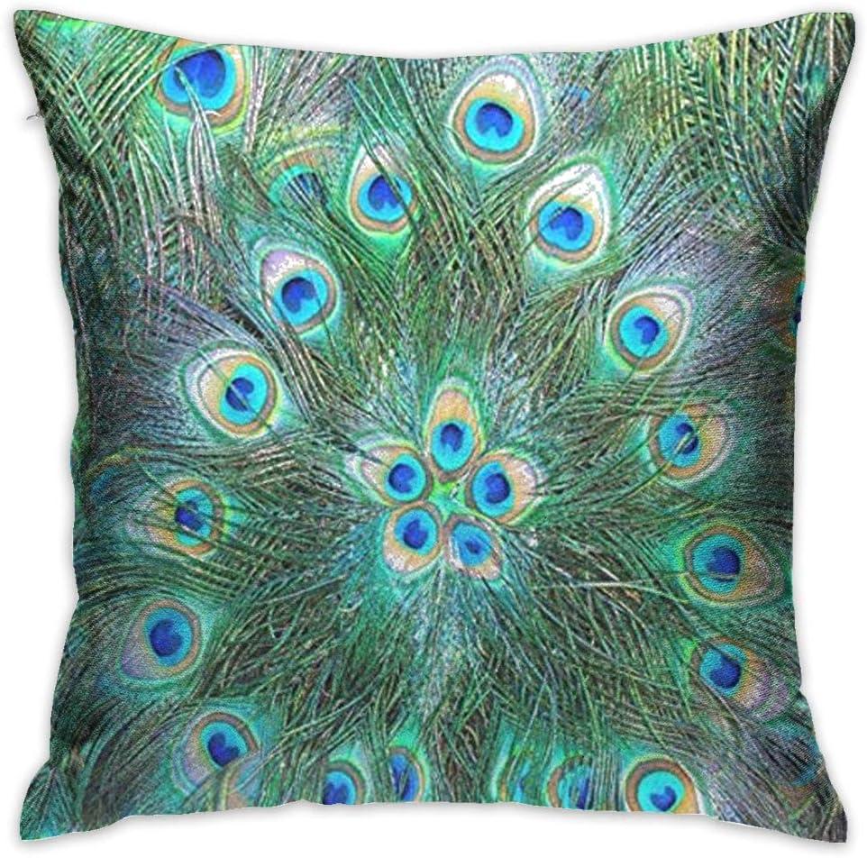 Throw Pillow Cover Pecock Feather Decorative Pillow Case Decor Square 18x18 Inch Cushion Pillowcase