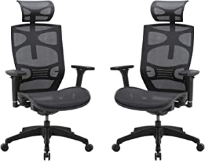 CLATINA Ergonomic Mesh Executive Chair with 4D Arm Rest and Adaptive Synchronize Seat High Back Swivel for Home Office 2 Pack