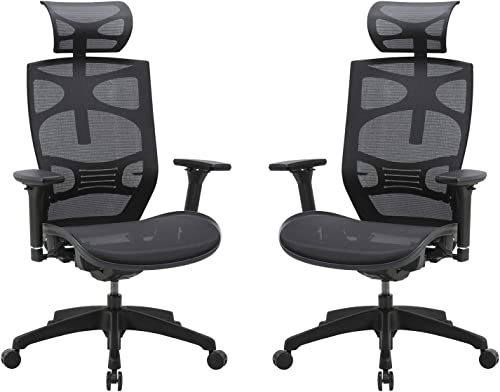 CLATINA Ergonomic Mesh Executive Chair with 4D Arm Rest and Adaptive Synchronize Seat High Back Swivel for Home Office BIFMA Certified 2 Pack