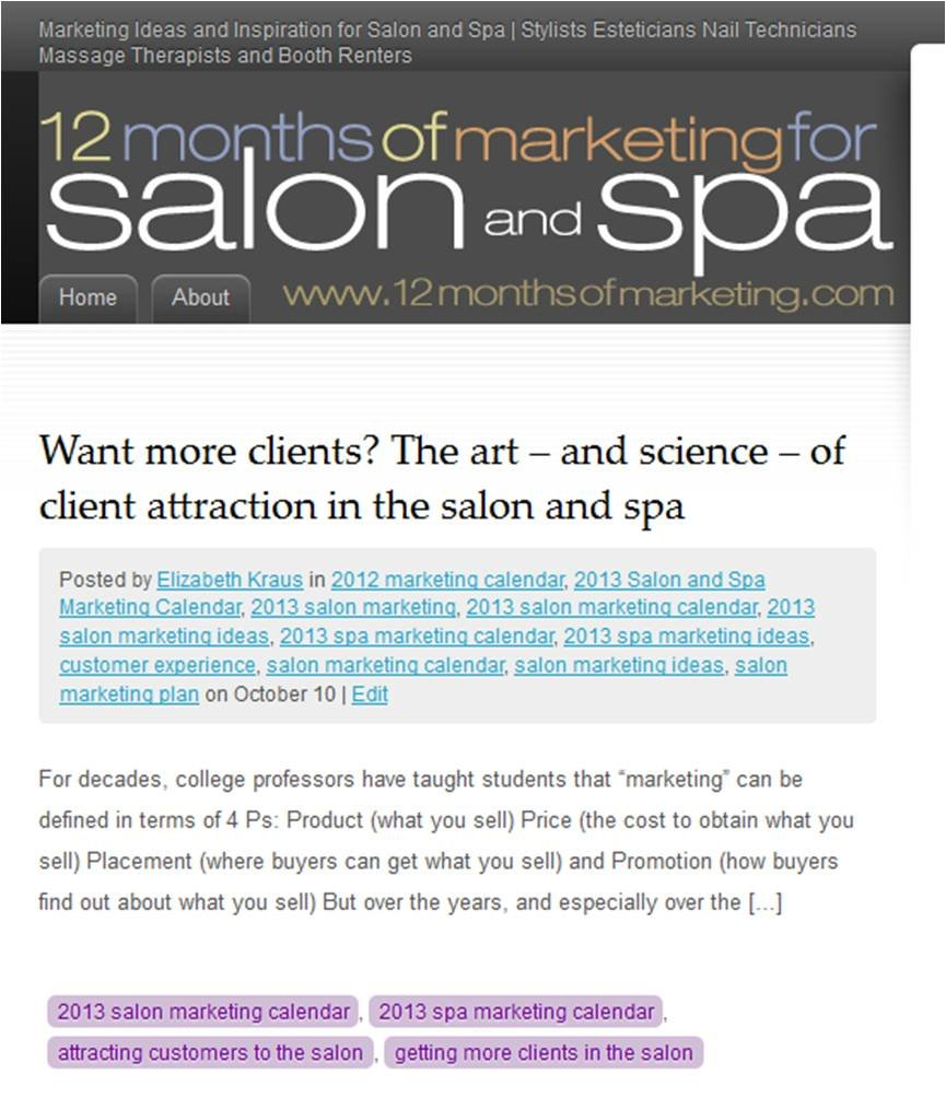 Amazon.com: 19 Months of Marketing for Salon and Spa: Elizabeth