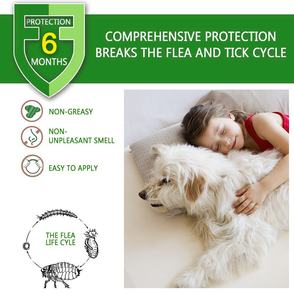 Collar de pulgas y garrapatas para perros, gatos, 6 meses de protección, resistente al agua y seguridad Ingredientes, control de repente, picor de larvas, ...