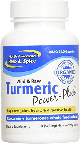 North American Herb Spice Turmeric Power-Plus Gels, 60 Count